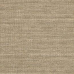 Acappella - Khaki Chord Wallcover